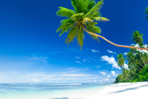 vanuatu-beaches