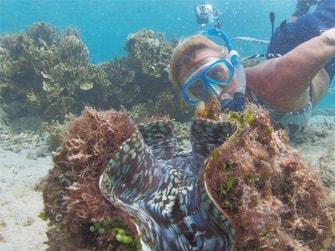 Uri-Marine-Reserve-Snorkelling-Tour-1