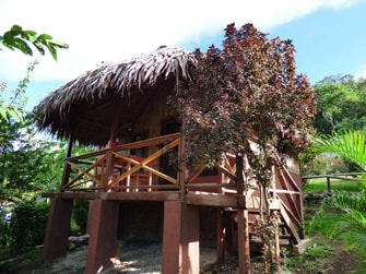 lakatoro-palm-lodge-min